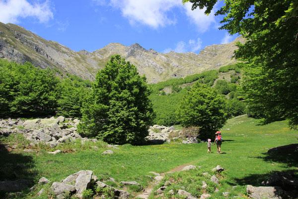Sorgente Hintegrund Alpe di Suciso