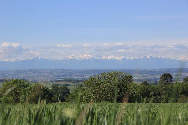 Blick zurück zu den Pyrenäen