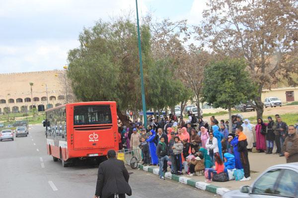 Busstop Meknes