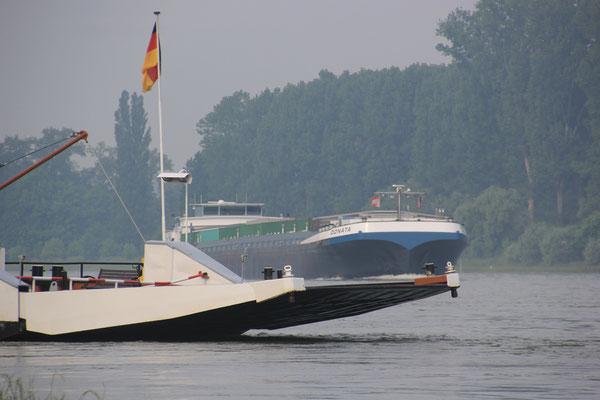 Standplatz Rhein bei Neubrugweiher