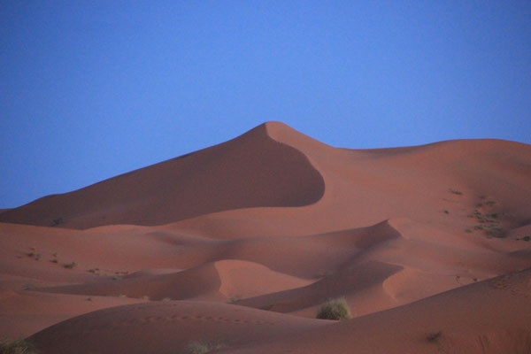 Sicht am Standplatz Sable de Rose, Erg Chebbi
