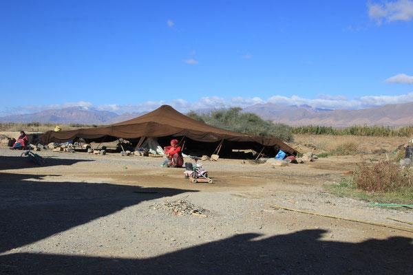 Berberzelt auf Olivenfarm Standplatz
