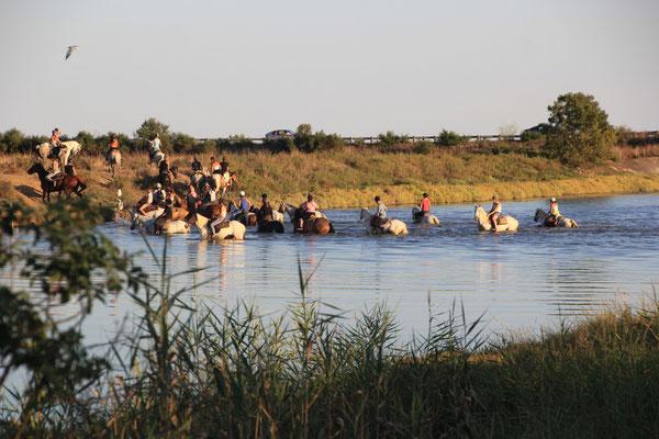 Reiter durchqueren Fluss am Standplatz b.Ville neuve