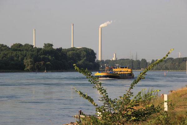 Standplatz am Rhein
