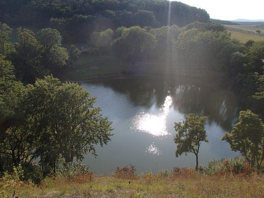 Frickenhauser See