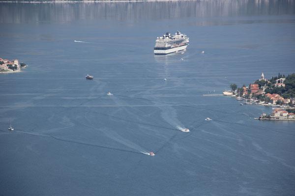 Kreuzfahrtschiff Bucht von Kotor