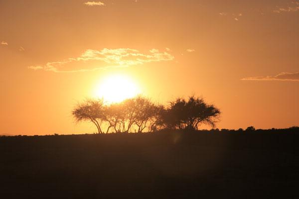 Sonnenuntergang Standplatz Oued Aisa