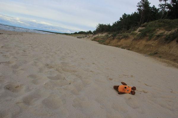 die Maus am Strand