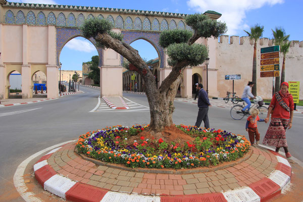 gepflegter Kreisverkehr, Ville royal Meknes