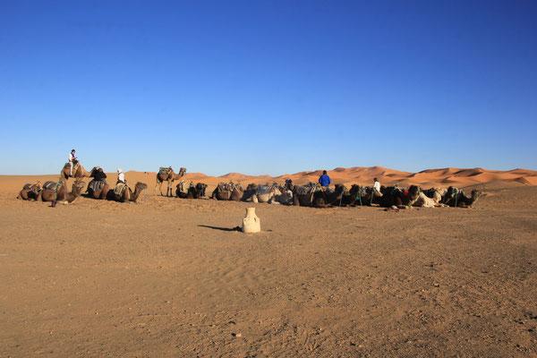 warten auf Touristen, Etoile le dune