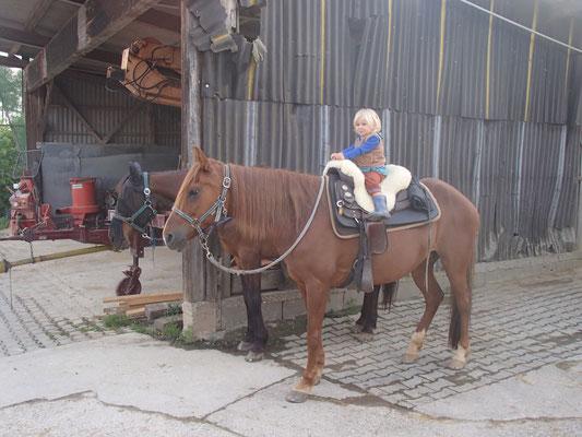 Sarah zum ersten Mal auf einem Pferd in Kleineicholzheim,