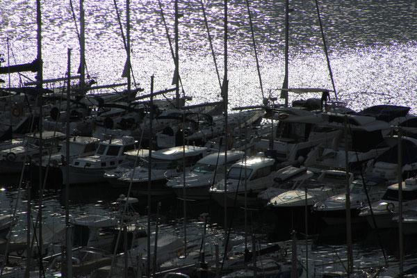 Hafen Javea