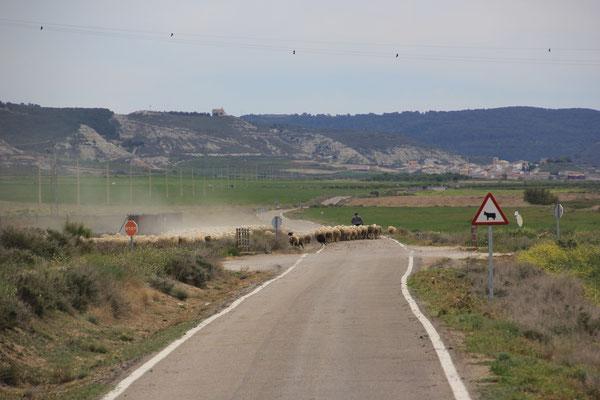 Richtung Sierra de Luna