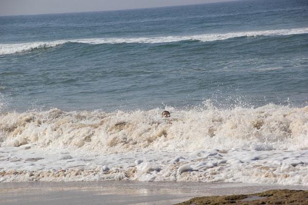 Stephanie und das Meer Teil II