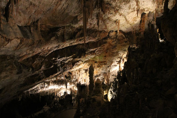 Höhle Postojna
