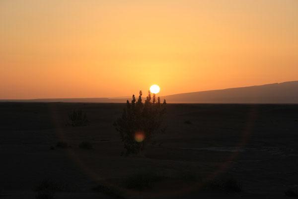 Sonnenuntergang am 1. Standplatz, Rand Lac iriki, Piste Foum-Zguid  - Mhamid
