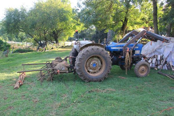 40 Jahre alter Traktor
