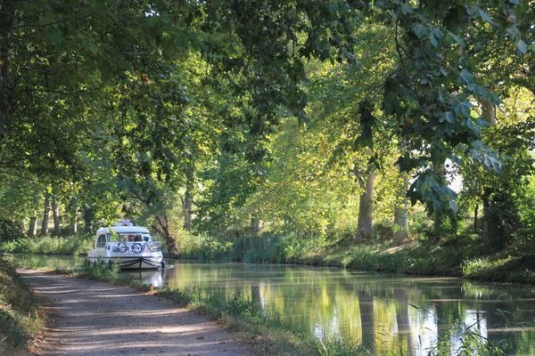 Morgenstimmung am Canal de Midi