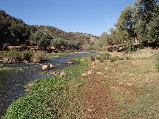 Fluß bei Ouzoud