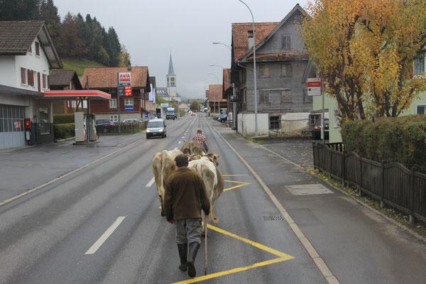 auf dem Weg nach Bern zur EXPO