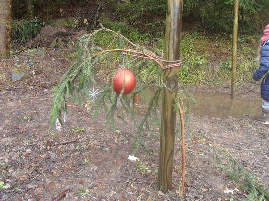 Weihnachtsbaum nach durchregneter Nacht