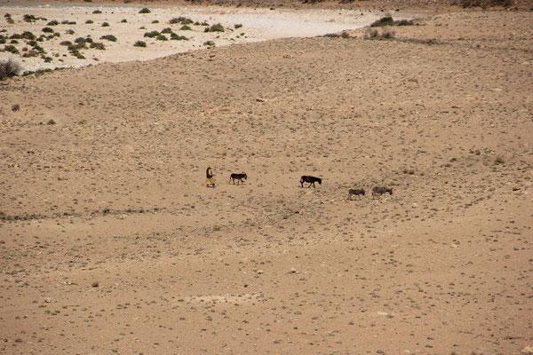 Einheimischer mit Eseln, R 601