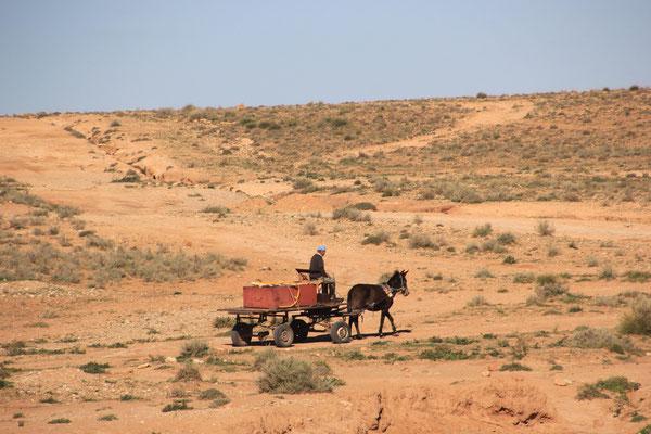 vorbeikommender Eselwagen, Standplatz bei Bouafra