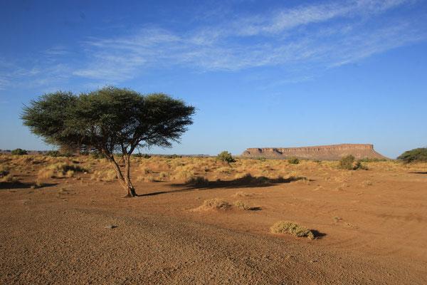 Stpl. 2 Nähe Tafelberg
