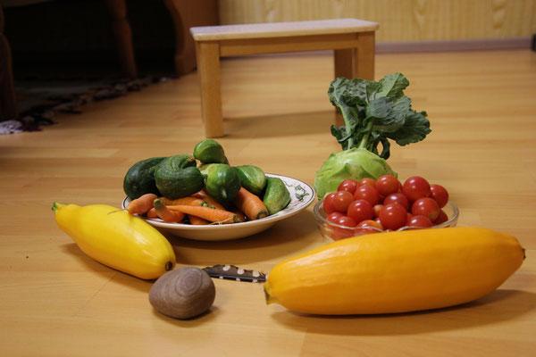 Gemüse vom Acker