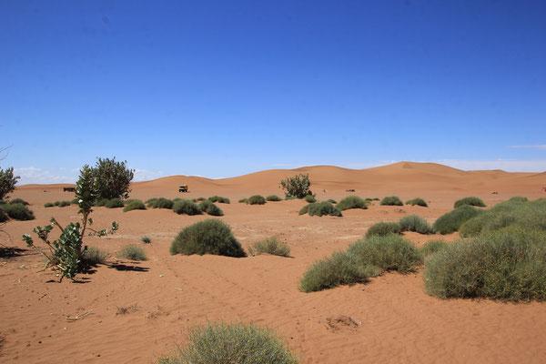 Sicht Richt. Grand dunes