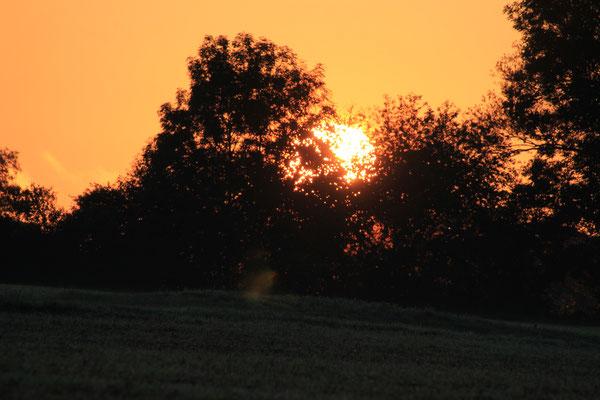 Sonnenaufgang am Übernachtungsplatz