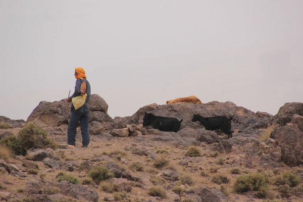 Hirte auf 2200 m Tizn Tazaret