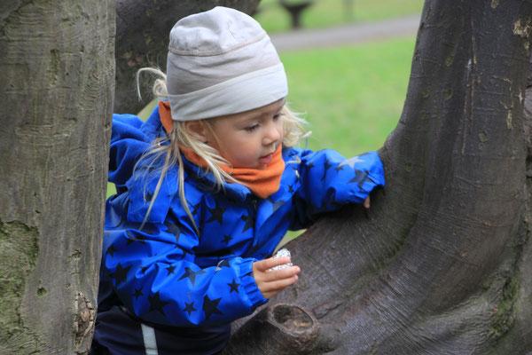 Ostersuche im Baum