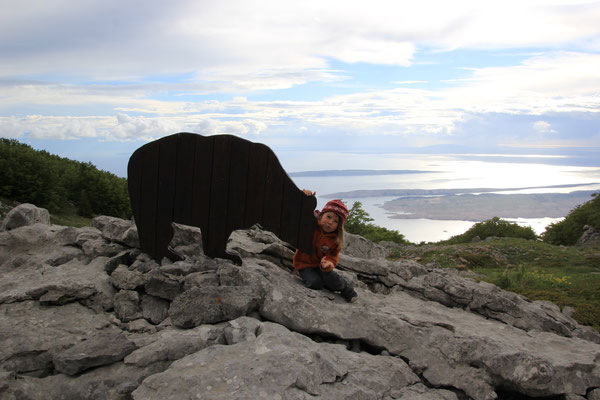 Bärenfütterung Alan Pass