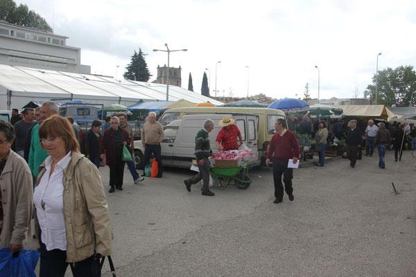Knoblauchverkäufer, Tomar