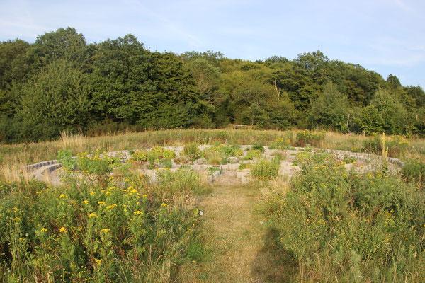 """kretisches Labyrinth auf dem """"Lichtberg"""""""