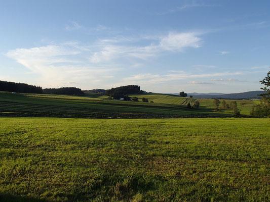 Landschaft bei Höllmannsried