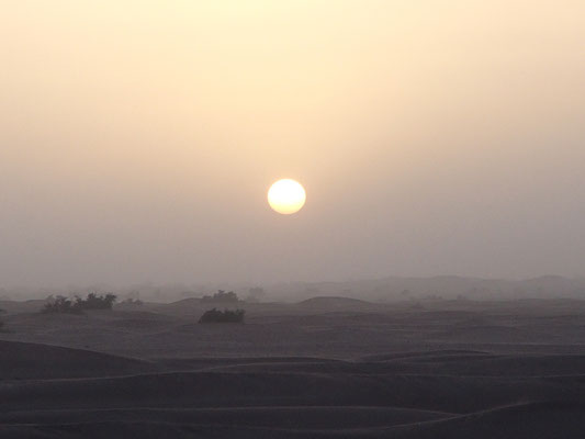 Sonnenuntergang 3. Standplatz im Wind, Piste Foum-Zguid  - Mhamid