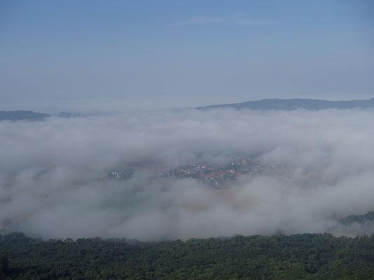 Bodenwerder im Nebel