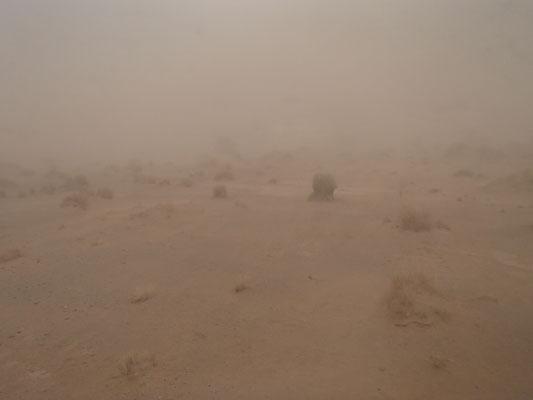 Sandsturm am Stpl. 2 Nähe Tafelberg