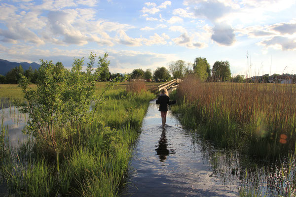 Rundweg Staffelsee überflutet