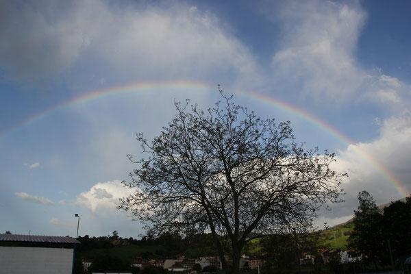Regenbogen am Standplatz, Panes