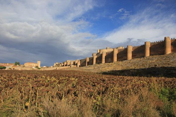 Castillo Burlangea de Duero