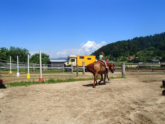 Sarah beim Reiten auf Quarterhorse