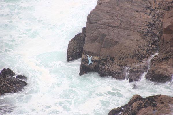 Muschelsammler, Cabo Roca