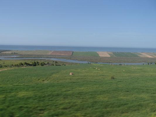Felder bis ans Meer