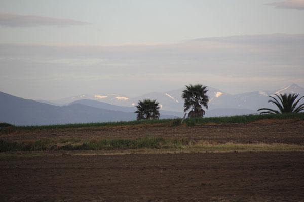 Blick in die Berge vom Standplatz, Playa Langra
