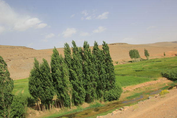 Nähe Agoudal