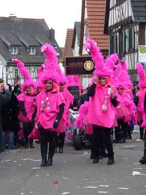 Golden Girls - Flamingo Girls