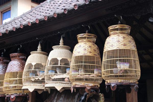 Vogelkäfige sind auch auf Bali überall anzutreffen